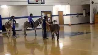 ASUMH Donkey Basketball Spring 2014