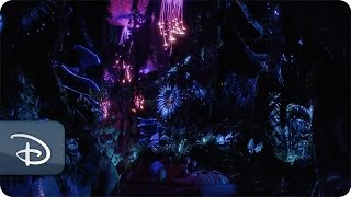 Creating Pandora – The World of Avatar as a Real Place | Disney's Animal Kingdom