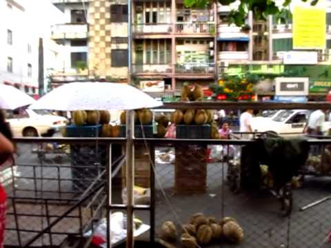 Walk Around Chinatown Street Market in Yangon Myanmar Burma Vegetables Fruits Food - Phil in Bangkok
