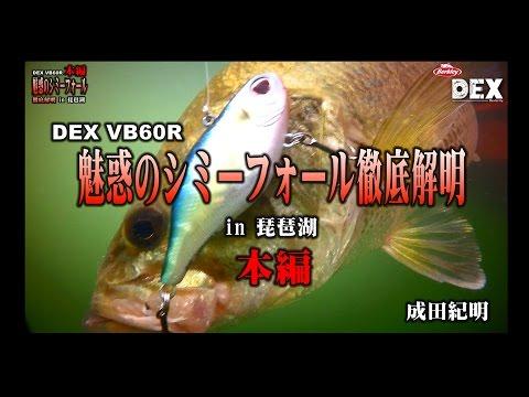魅惑のシミーフォール in 琵琶湖 (本編)