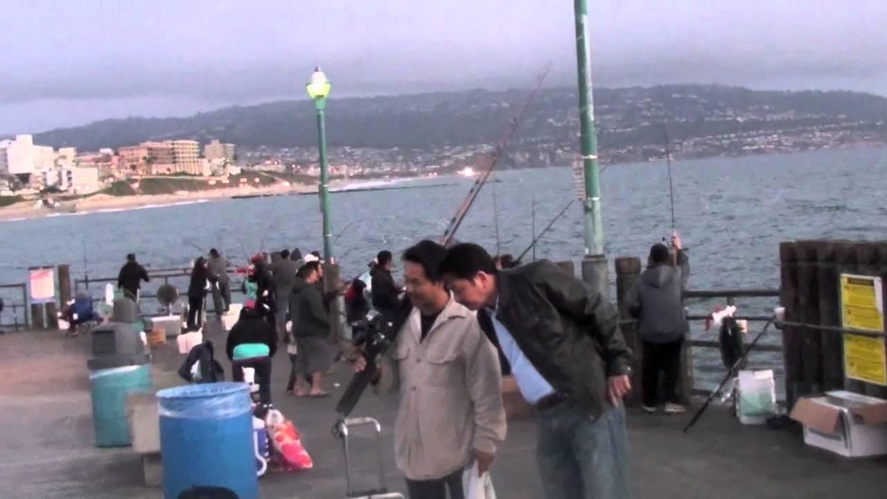 Fishing redondo beach july12 youtube for Redondo sport fishing