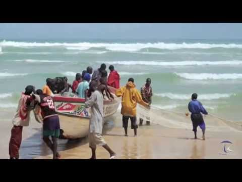 Senegal Travel