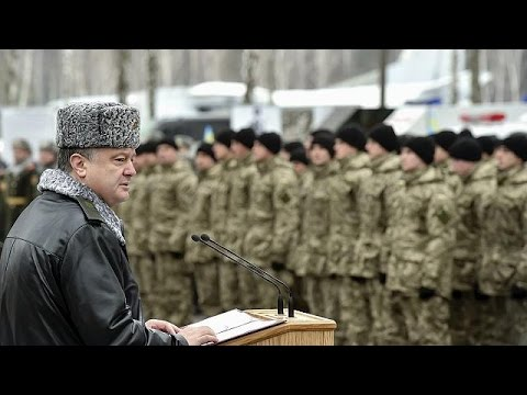 Ukraine: President Petro Poroshenko questions if ceasefire will take effect