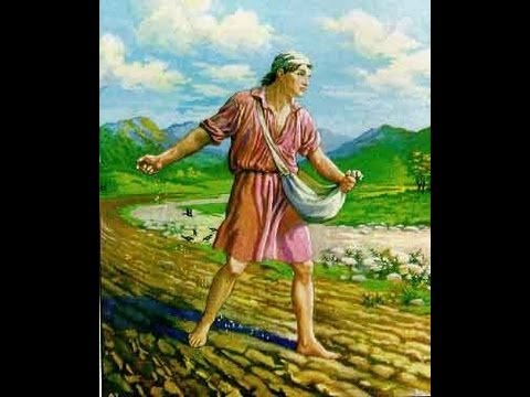 A PARÁBOLA DO SEMEADOR PREGAÇÃO SOBRE O BOM CORAÇÃO MATEUS CAPITULO 13COMENTÁRIO BÍBLICO