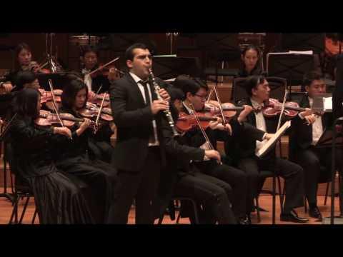 Louis Spohr - Clarinet Concerto No 1. I. Adagio-Allegro
