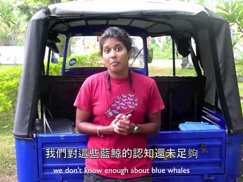 Opcfhk Ussp 2012 Conservation Of Blue Whale In Sri Lanka (hku) video