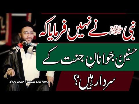 Aik Hadees Ki Wazahat ? | Maulana Syed Shahenshah Hussain Naqvi | 4K