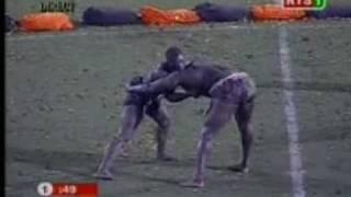 Top 15 De L'arène Lutte Sénégalaise