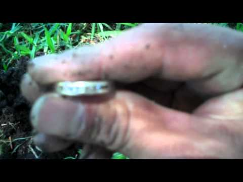 Fisher F2 DD Coil Finds First Diamond Ring!!! Yes...