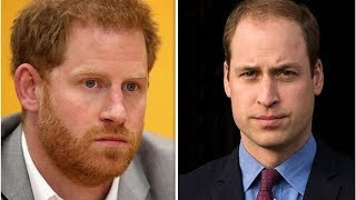 Prince William used to 'TEASE' Prince Harry for being single - 'You're a GOOSEBERRY'