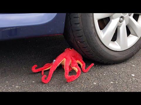 EXPERIMENT: CAR VS OCTOPUS thumbnail