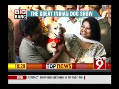 News 9 - The Great indian Dog Show