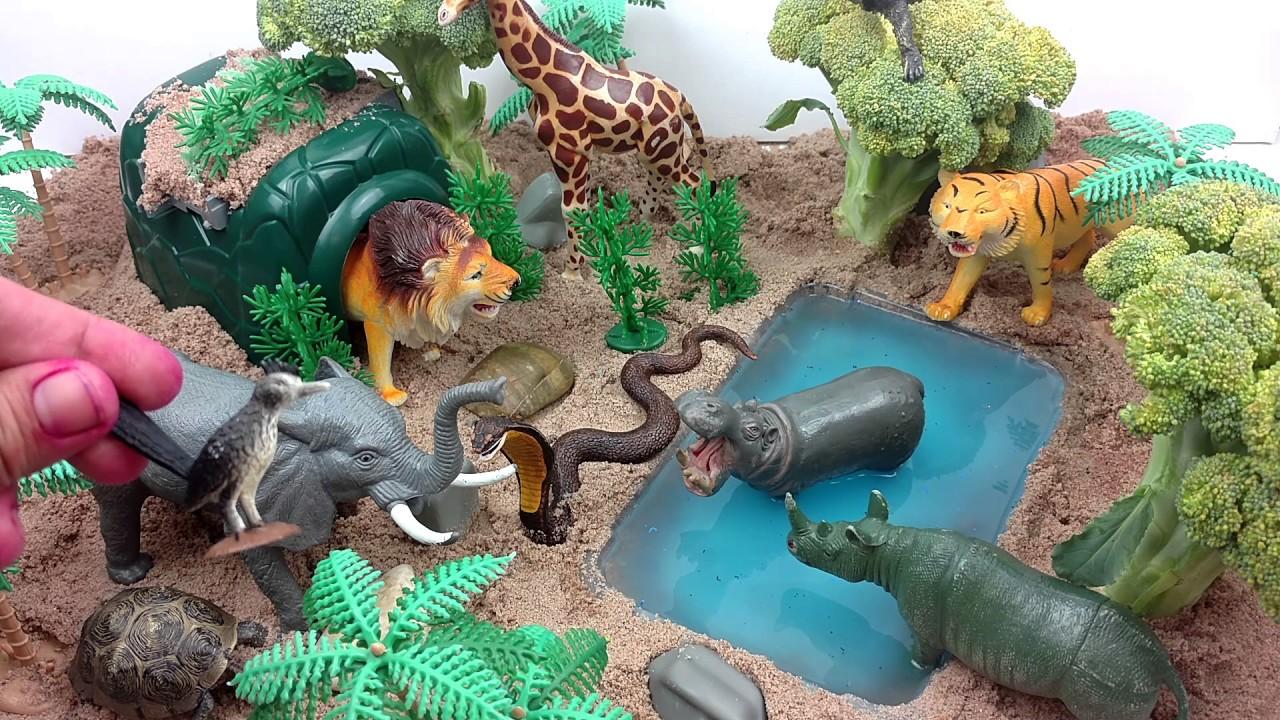 topic Planner Animals  Cisonline