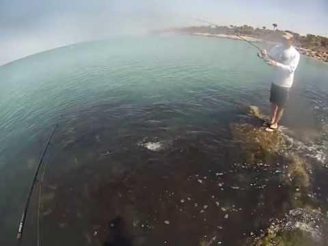Fishing at Venice Beach Fl. With Gopro Hero 3