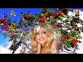 Прекрасная песня Куст рябины Ион Суручану mp3
