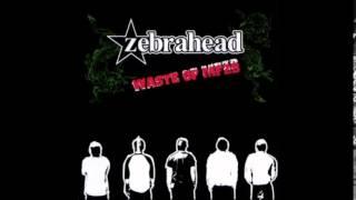 Watch Zebrahead Burn The School Down video