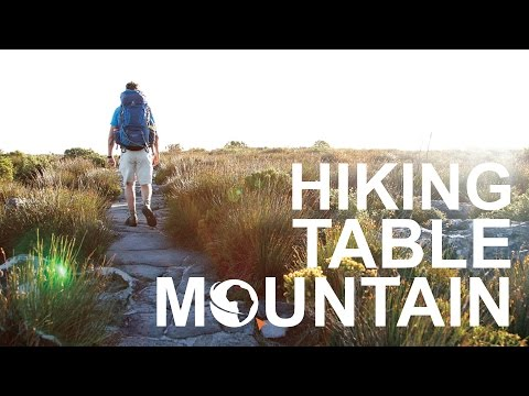 Visit Cape Town | Hiking Table Mountain with the Fynbos Guy