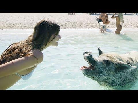 Summer Vacation!! | Hannah Stocking & MyLifeAsEva
