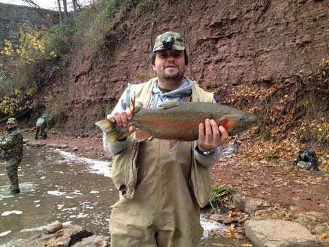 9 LB Steelhead trout fishing in New York. It is on 18 mile creek