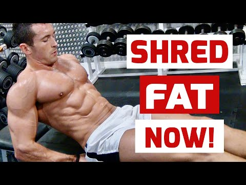 FAT-BURNING GERMAN BODY COMP TRAINING with WBFF PRO JAMES