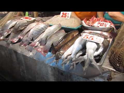 The fresh fish market in Manila. Lots of great sites and smell.