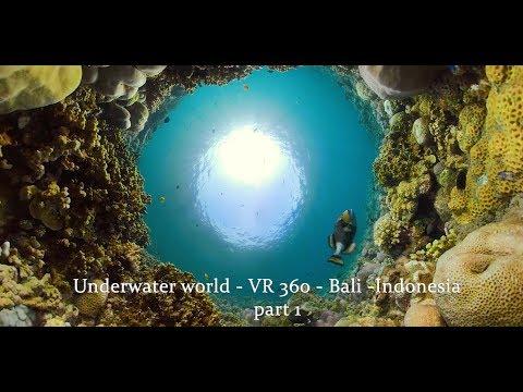 Underwater world - Bali - VR 360- Indonesia part 1