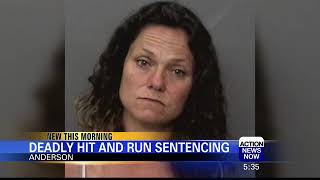 Woman Faces 12-Year Sentence in Deadly Hit-and-Run
