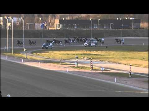 Vidéo de la course PMU PRIX RIETHANDEL BIJKERK (MAIN WISE AS CHALLENGE)