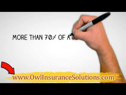 Disability Insurance |Owl Insurance