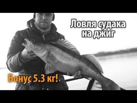 днепр судак видео рыбалка