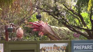Pandora: The World of AVATAR at Disney's Animal Kingdom Construction Update - Walt Disney World