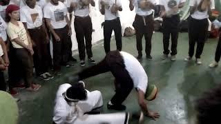 Formado pica pau arte de saber viver capoeira e angoleiros do sertão