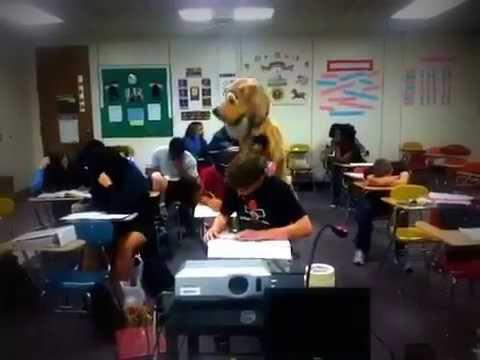 southwest edgecombe high school harlem shake