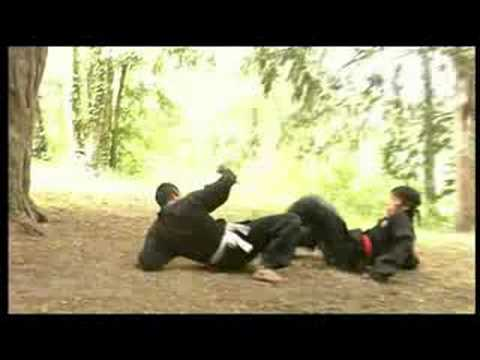 PENCAK SILAT - 5 experts 5 styles Vol 2 Image 1