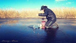 Первая рыбалка на льду. Ловля белой рыбы (плотва, красноперка, густера). Ловля живца. Первый лед.