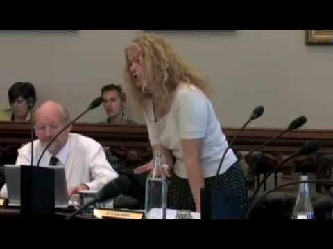 Dunedin City Council - Council Meeting - December 15 2014