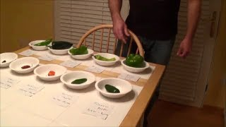 Dad eats Moruga Scorpion & Ghost peppers +8 more : The 10 Hot Pepper Challenge, Crude Brothers