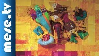 Lackfi János: Balaton télen (animáció, mese)