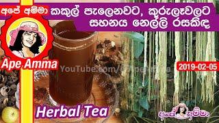 Nelli rasakinda herbal drink by Apé Amma