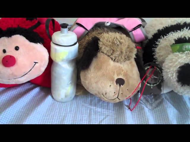 REV3 Pillow Pet Show - Adventure Race