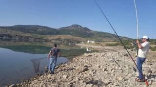 kızıllar barajı sazan avı huseyın eriş