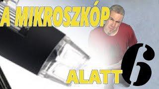 A Mikroszkóp Alatt 6