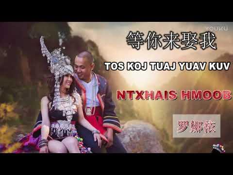 [Hmong Song 苗族歌曲] Paj Yi Lauj(罗娜依): Tos Koj Tuaj Yuav Kuv 等你来娶我