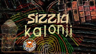 Sizzla -Your Culture - May 2017