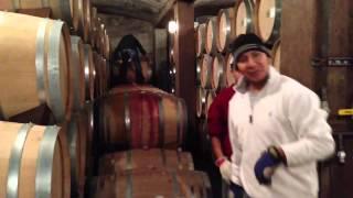 Behind Trader Joe's $2 wine