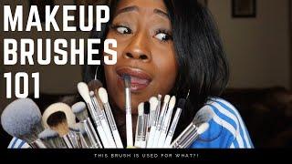 Makeup Brushes 101 Ft. Jaclyn Hill X Morphe