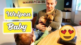 Neues Familienmitglied - Süßes Hundewelpen Baby - Vlog#1079 Rosislife