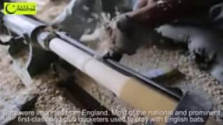 Cricket Bats production in Sialkot#PAKISTAN