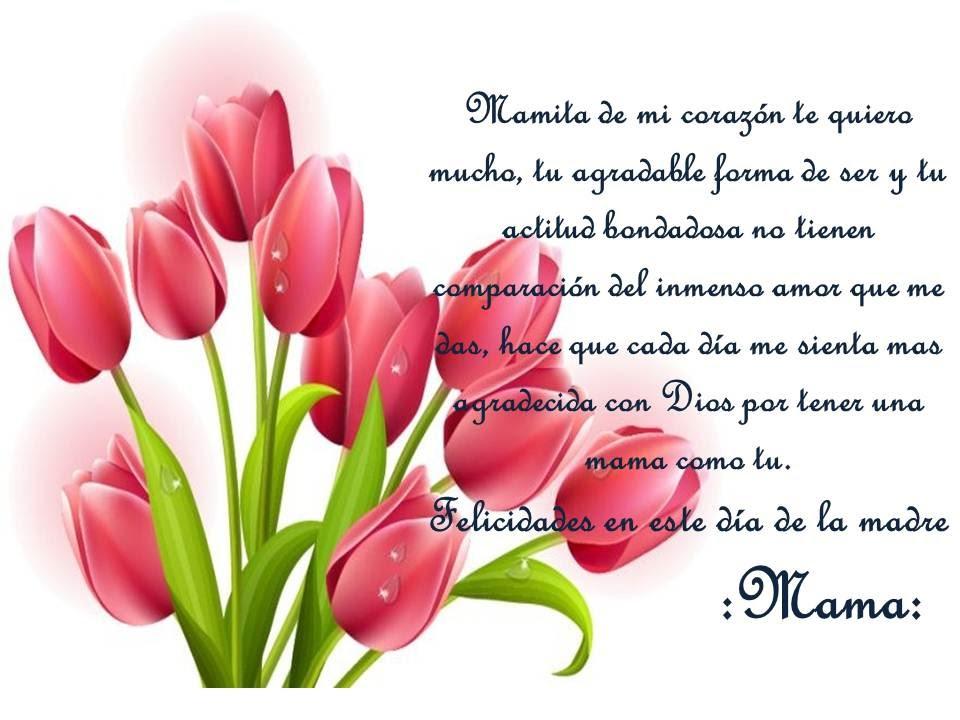 Poemas te Quiero Mucho te Quiero Mucho Mama Mamita