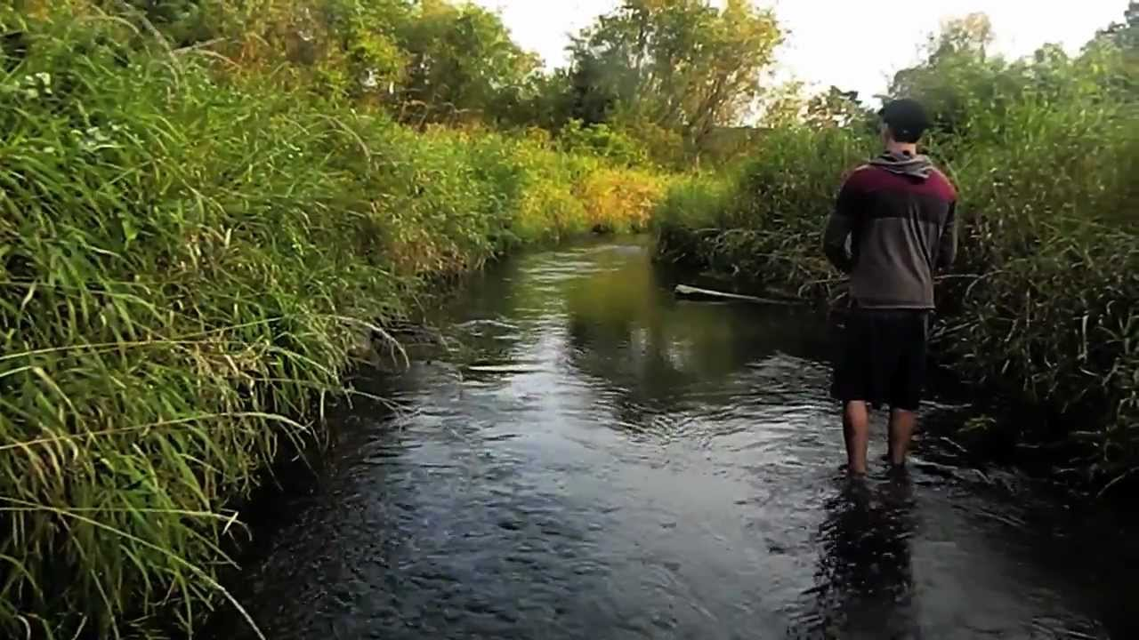 Trout fishing wisconsin youtube for Montana out of state fishing license